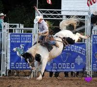 Dick-Berg-Memorial-Rodeo