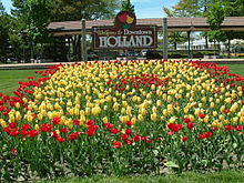 Holland, MI Tulips