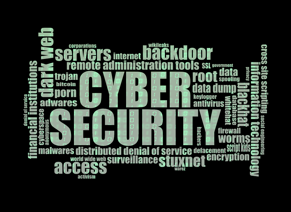 cyber-security-1805632_960_720.png