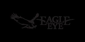 eagle_eye_1200-300x150.png