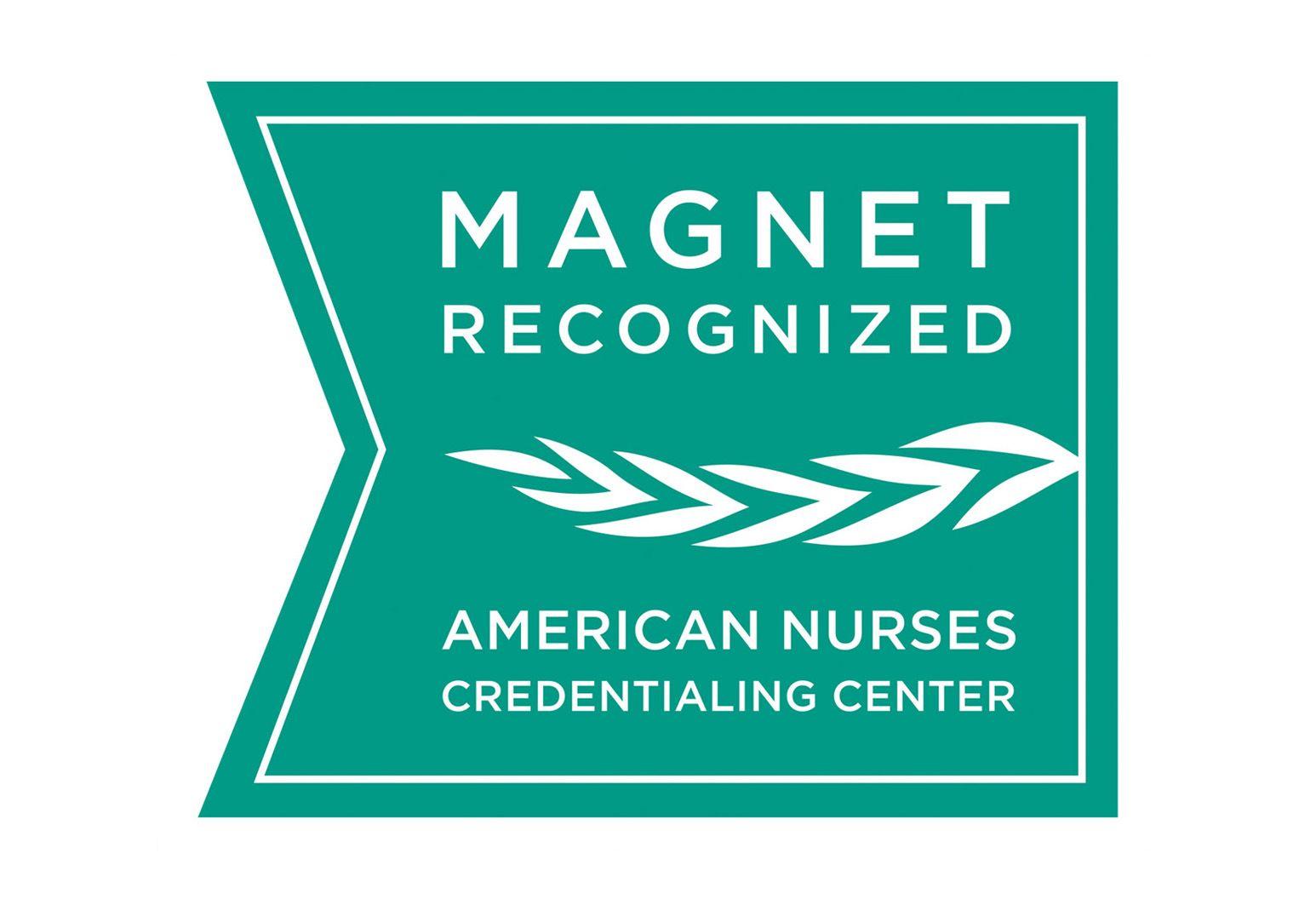 Drupal-Web_Magnet Recognition_logo