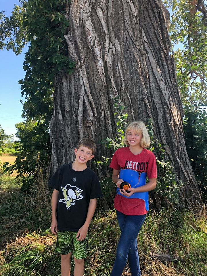 The LARGEST TREE in Michigan from a nominator 15 or younger